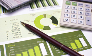 Services, Panama City Financial Statements